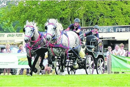 carriage driving 1